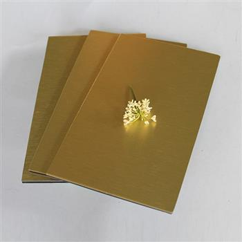 PE Gold Brush Aluminum Composite Panel | Crownbond.com